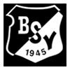 Logo_BSV_100x100